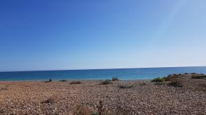 Mid-September beach days